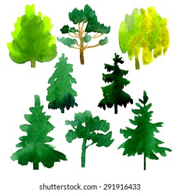 Set of 8 trees, hand drawn in watercolor medium, isolated on white background. Vector illustration