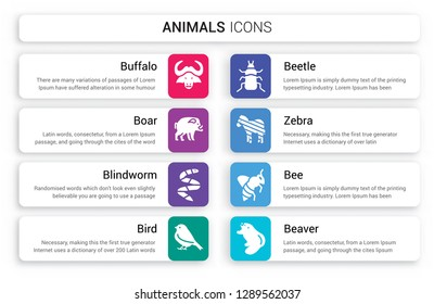 Set of 8 white animals icons such as Buffalo, Boar, blindworm, Bird, Beetle, Zebra isolated on colorful background