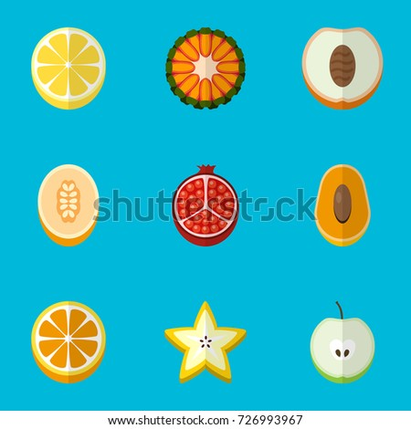 set 9 editable fruits flat icons stock vector royalty free