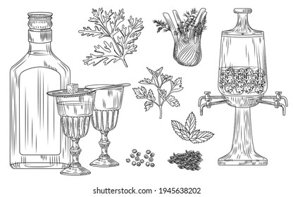 Set of absinthe. Cocktail glass and bottle, spoon, sugar, fountain, wormwood, fennel, parsley, dill, mint, coriander anise ice Engraving vintage style vector illustration