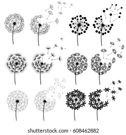 Set of abstract Dandelions for spring season