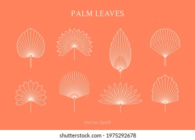 Set of Abstract Palm Leaves in a Trendy Minimal Linear Style. Vector Tropical Leaf Boho Emblem. Floral Illustration for create Logo, Pattern, T-shirt Prints, Tattoo, Social Media Post and Stories