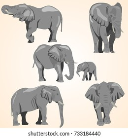 A set of African elephants and a baby elephant. Isolated, each object is located on a separate layer, light brown background