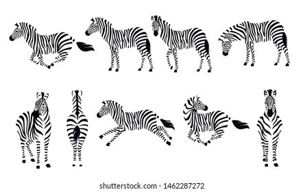 Set of african zebra side and front view outline striped silhouette animal design flat vector illustration isolated on white background