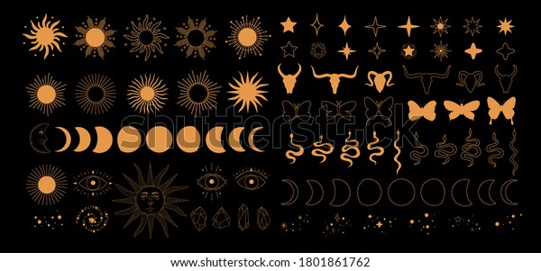 Set of alchemy esoteric mystical magic celestial icons, sun, moon phases, stars, sacred geometry isolated. Spiritual animals butterfly, snake, skull of bull occultism. Vector illustrations outline