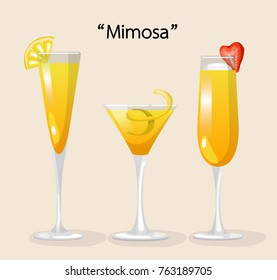 Set of Alcohol Drinks and Cocktails : Mimosa : Vector Illustration