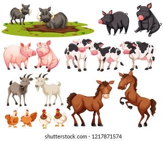 Set of animal on white background illustration