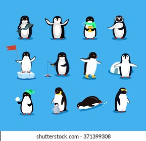 Set of animal penguin design flat illustration