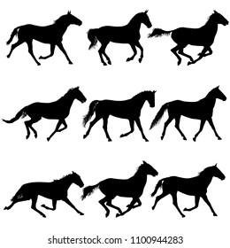 Set animal silhouette of black mustang horse illustration