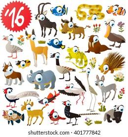 set of animals antelope, impala, snake, warthog, clown fish, grouper, pelican, llama, husky, canadian goose, porcupine, walrus, iguana, heron, stork, badger, pheasant, rhinoceros, saiga, lemming