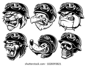 Set of animals bikers. Design of motorcycle riders. Sport mascots, isolated on white background.