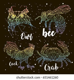 Set of animals constellations, rainbow coloring, vector, space, Owl, bee, rooster, crab