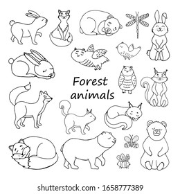Set of animals design elements. Squirrel, hare, fox, bear, leaves, acorns, berries. Сoncept nature wildlife. Hand drawn vector illustration in doodle style outline drawing isolated on white background