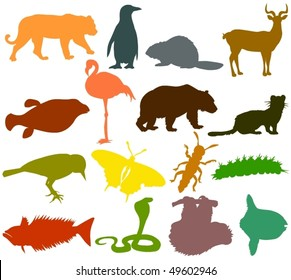 Set of animals icons F  - silhouettes