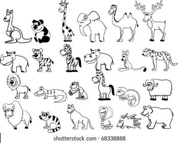 Black White Jungle Animals Hd Stock Images Shutterstock
