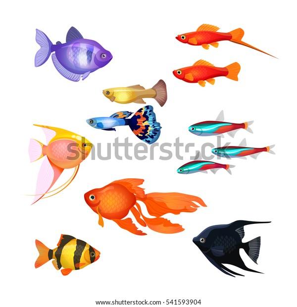 Vetor Stock De Conjunto De Peixes De Aquario Peixe Livre De