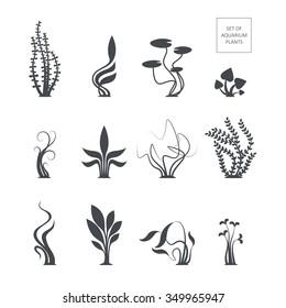 Set of aquarium plants