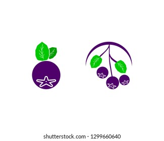 Set of Aronia berry logo template