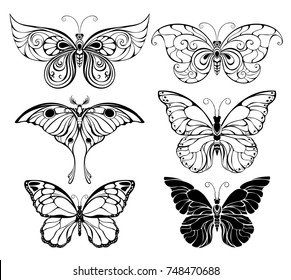 Set of artistically drawn, outline, black butterflies on white background.