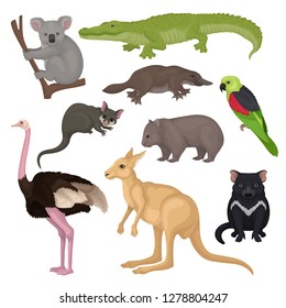 Set of Australian animals and birds. Wild creatures. Fauna theme. Detailed vector elements for zoology book or poster