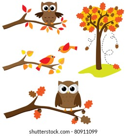 Set of autumn nature elements: owls and birds on branches and oak tree