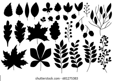 Set of autumn silhouettes of leaves and berries. Isolated on white background.