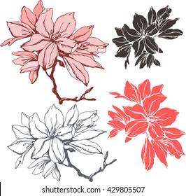 Set with  azalea flower . Silhouette  pattern for celebration design.