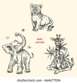 Set of baby animals. Wild. Giraffe, elephant, lion. Vintage style. Vector illustration.