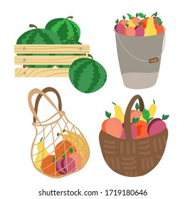 set of basket, shopping bag, box with fruits. Mesh eco bag full of fruit isolated on white background. Modern shopper with fresh organic food from local market.