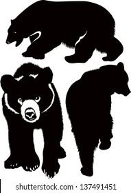 set bears isolated on white background