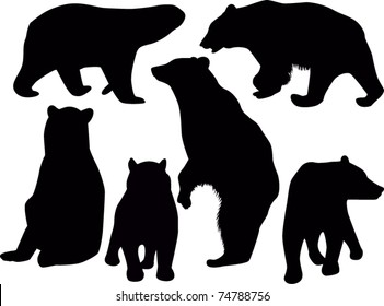set of bears isolated on white background