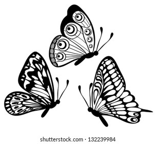 set of Beautiful black and white butterfly isolated on white. Many similarities to the author's profile