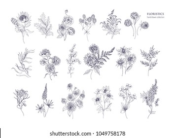 Set of beautiful floristic flowers, flowering plants and wild herbs hand drawn with black contour lines on white background. Bundle of elegant botanical decorations. Hand drawn vector illustration