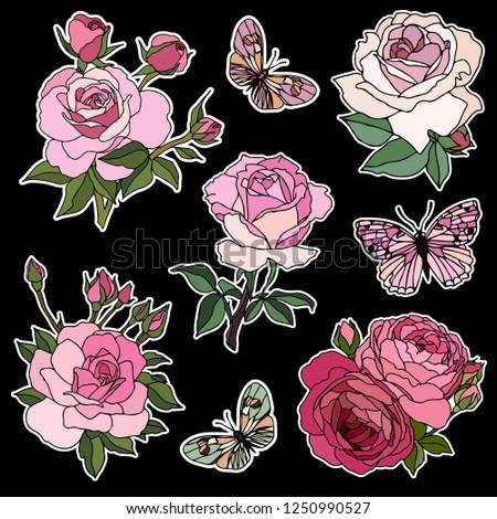 Set Beautiful Flowers Roses Vector Illustration Stock Vector
