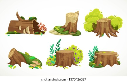 Set of beautiful old moss-covered stumps, summer leaves, rubbing a pack of mushrooms, bushes isolated on white background. Environment element