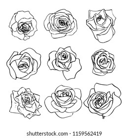 Set of beautiful outline rosebuds icons on white