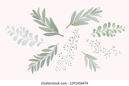 Set with beautiful twigs with leaves. Wedding ornament concept. Imitation of watercolor, isolated on white. Sketched wreath, floral and herbs garland