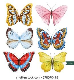 Set of beautiful watercolor butterflies, vector illustration