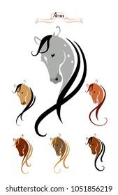 Set of  beauty Horse heads. Vector color illustration. Six horses.