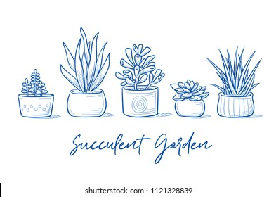 Set of beautyful succulent plants in garden pottery with hand written font. Hand drawn blue outline line art cartoon vector illustration.
