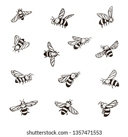 Set of bee, vector illustration.