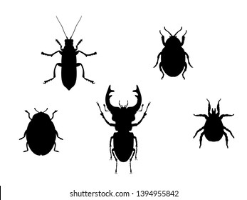 Set beetles insect black silhouette animal. Vector Illustrator.