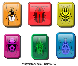 A set of Beetles.Style: Glossy, Paper Weight.