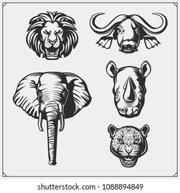 Set of Big Five animals. Lion, elephant, rhino, leopard and buffalo.