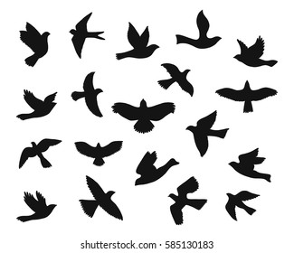 Set of bird flying silhouettes. Eagle, falcon, hawk, dove, swallow, raven, swift and others. Vector illustration
