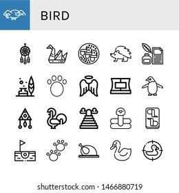 Set of bird icons such as Seagull, Dreamcatcher, Origami, Chicken wings, Hedgehog, Quill, Feather, Animal, Angel, Collar, Penguin, Rooster, Heaven, Flamingo, Birdie, Chicken , bird