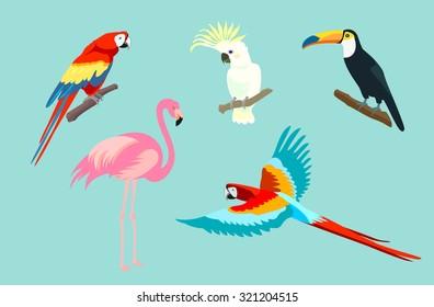 Set of birds. Bright exotic tropical birds. Macaw, Cockatoo, flamingo, toucan. Vector.