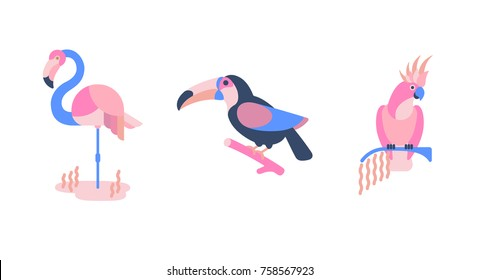 Set of birds. Bright exotic tropical birds.  Cockatoo, flamingo, toucan. Vector.