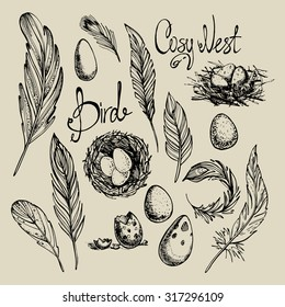 "Set from the bird's feathers, nests and eggs drawn by hand and inscriptions ""a cozy nest"" and ""bird"". Graphics.Vector illustration."