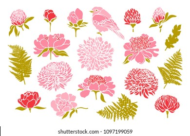 Set with birds and flowers. Peony, chrysanthemum, clover, tulip, fern. Vector illustration.